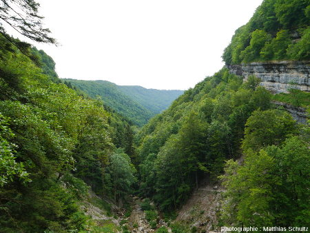 """Vue de la """"quasi-reculée"""" du Hérisson (Jura) depuis le cirque du Grand Saut(ou Queue de Cheval)"""