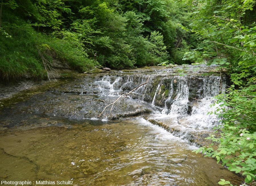 Un petit saut juste en amont du Gour Bleu, sur le cours du Hérisson (Jura)