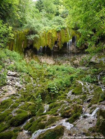 Vue plus rapprochée de la base de la cascade de travertin (ou tufière) en rive gauche du Hérisson (Jura)