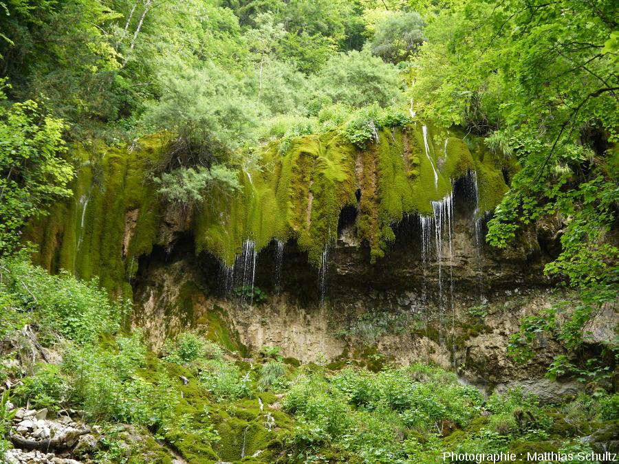 Vue plus rapprochée de la cascade de travertin (ou tufière) en rive gauche du Hérisson