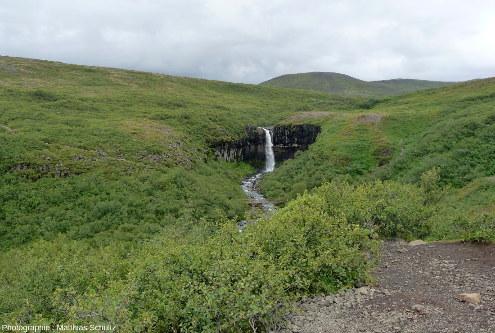 Svartifoss, une petite chute franchissant une coulée joliment prismée à Skaftafell, dans le parc de Vatnajökull, au Sud-Est de l'Islande