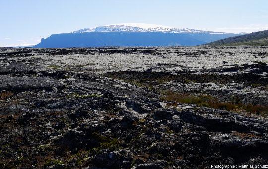 Champ de lave Hallmundarhraun, dans les hautes terres près d'Húsafell, au Sud-Ouest de l'Islande