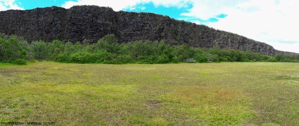 Les falaises de la partie amont (Sud) d'Ásbyrgi (Islande) vues depuis le fond de l'amphithéâtre