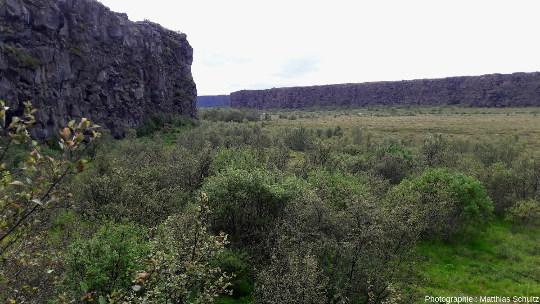 Les falaises de la partie aval (Nord) d'Ásbyrgi vues depuis le fond de l'amphithéâtre