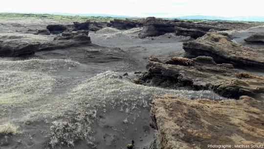 Terres désolées en amont d'Ásbyrgi (Islande), en direction du cours de la Jökulsá á Fjöllum