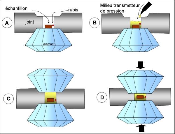 Principes de chargement d'une cellule à enclumes de diamant.