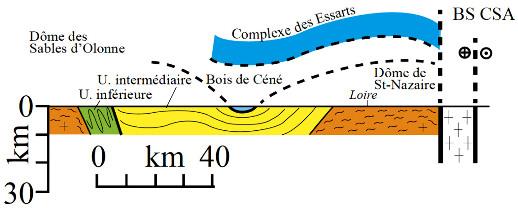 Coupe schématique du domaine Sud-Armoricain dessinée d'après les données de surface