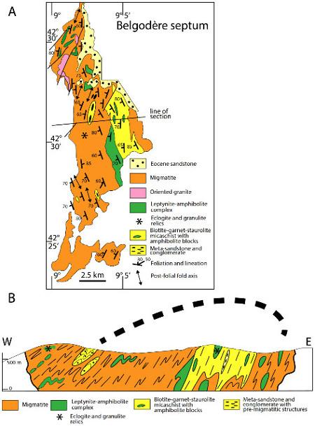 Schéma structural et coupe du septum de Belgodère (Corse)