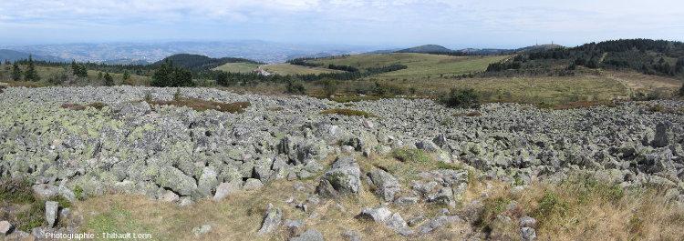Chirat au Crêt de la Perdrix, massif du Pilat
