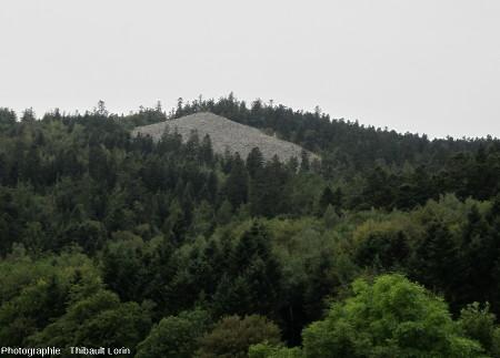 Chirat non loin du Priel, massif du Pilat
