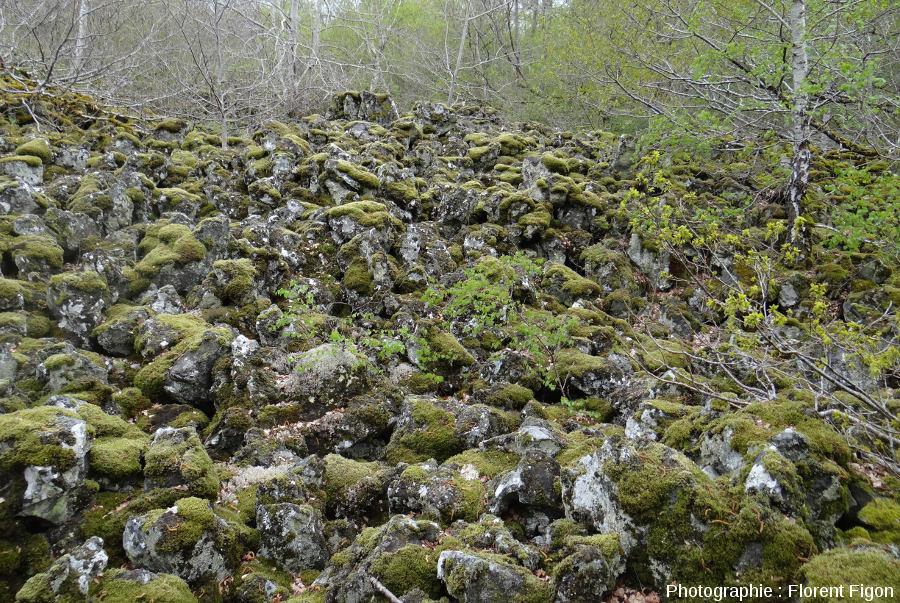 Coulée de lave scoriacée de type aa du Puy de Côme