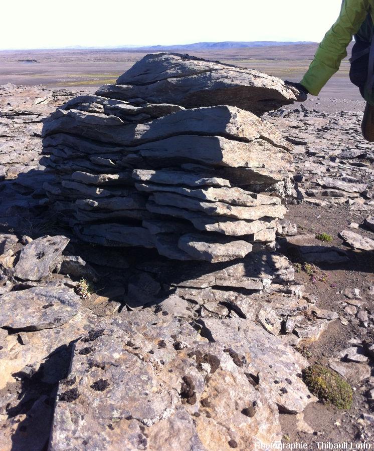 Figures de gélifraction (ou cryoclastie) sur un bloc rocheux islandais
