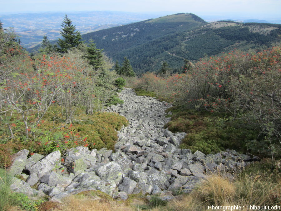 """Le chirat, ici du Pilat, une """"rivière rocheuse"""" à la française?"""