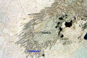 Lame mince de gneiss des monts du Lyonnais