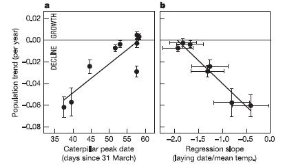 Corrélation chez différentes populations hollandaises de Gobemouche noir (Ficedula hypoleuca) entre la tendance démographique à long terme et (a) la date du pic d'abondance de chenilles (la ressource principale de l'oiseau), (b) le coefficient de régression entre date de ponte et température printanière moyenne