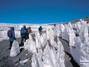 Les pénitents du Kilimandjaro