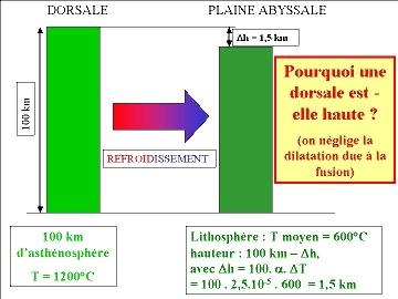 Différence de hauteur entre une dorsale et la plaine abyssale (1/2)