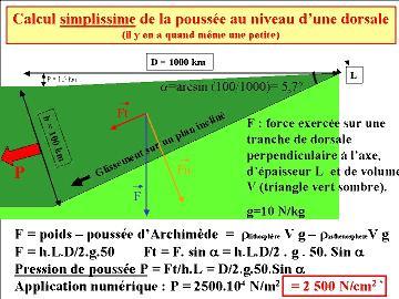 Calcul simplifié de la poussée au niveau d'une dorsale