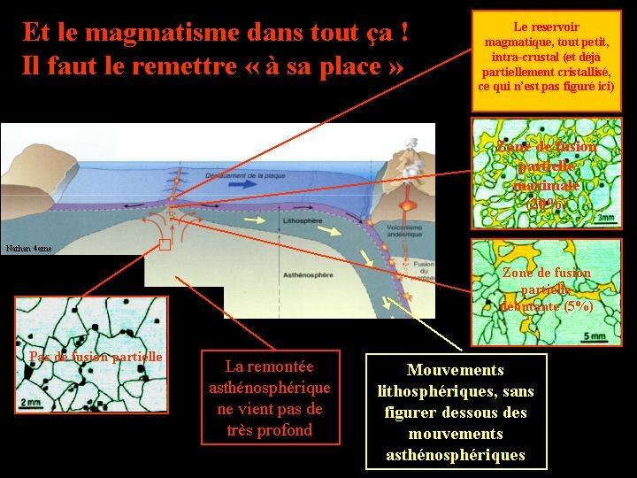 Localisation du magmatisme