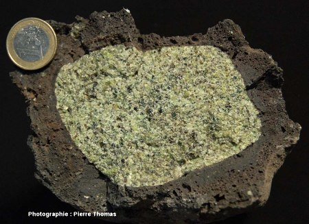 Échantillon de péridotite, en enclave dans un basalte du Massif Central