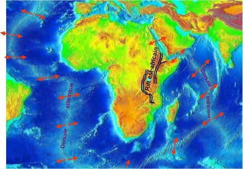 La plaque Afrique, bordée de dorsales à l'Est comme à l'Ouest