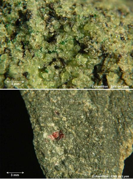 Photographies macroscopiques de deux péridotites: une péridotite à spinelle (en haut) et une péridotite à grenat (en bas)