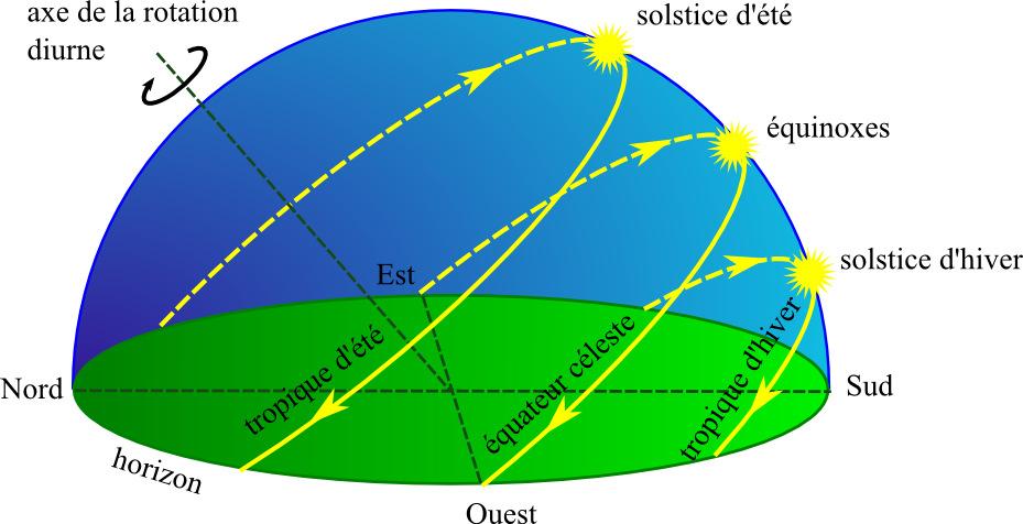 Trajectoires diurnes du Soleil au cours de l'année (vision locale)