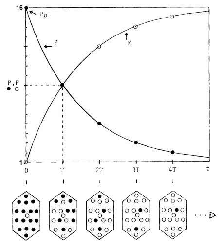 droite isochrone rubidium strontium radiometric dating