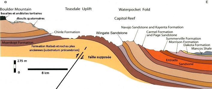 Coupe théorique du Waterpocket Fold, formant à l'Est superbe structure monoclinale de grande ampleur disséqué par l'érosion, Parc national de Capitol Reef