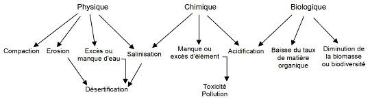 Principaux types de dégradation des sols