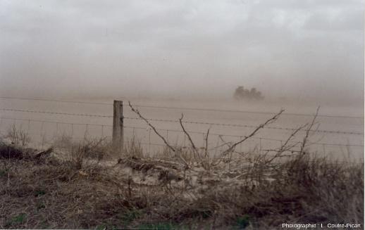Vent de sable en région semi-aride très peu couverte par la végétation, région Sud-Ouest de l'Australie