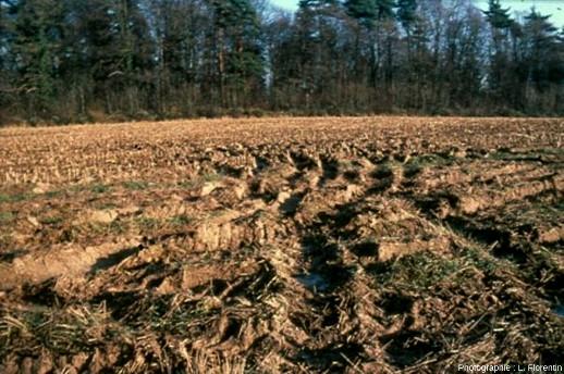 Compactage mécanique du sol lors d'une récolte de maïs d'automne en climat tempéré semi-océanique, région de Lorraine, France