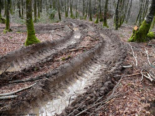 Compactage mécanique des sols lors de débardage forestier en climat tempéré atlantique, Limousin, France