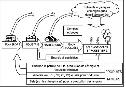 Pollution des sols à travers les activités urbaines et industrielles