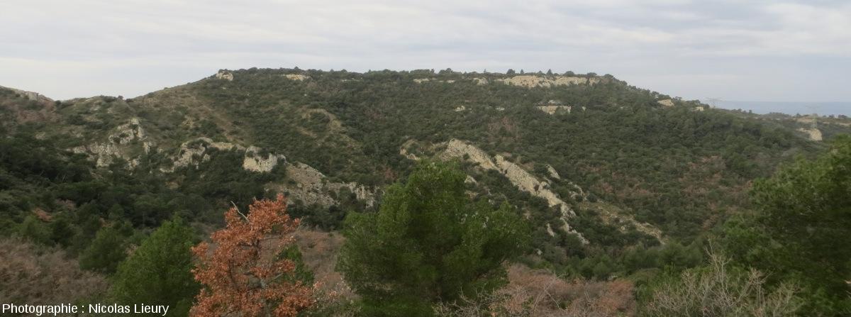 Point de vue, vers l'Ouest-Sud-Ouest, sur le plateau de Sèze subhorizontal (Miocène) reposant sur des couches redressées (pendage 40° N-O) du Crétacé inférieur