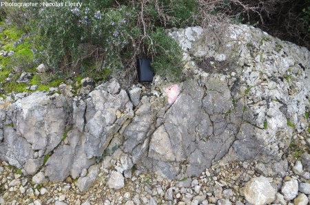 Affleurement 1, couches calcaires redressées sous le plateau de Sèze
