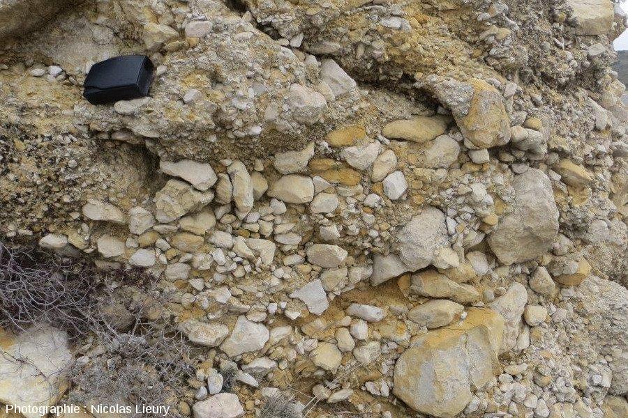 Affleurement 2, zoom sur les conglomérats calcaires où dominent des éléments grossiers plus ou moins roulés