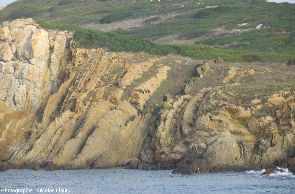 Plis dans les micaschistes de l'île de Bagaud, réserve intégrale à l'Ouest de l'île de Port-Cros îles d'Hyères, Var