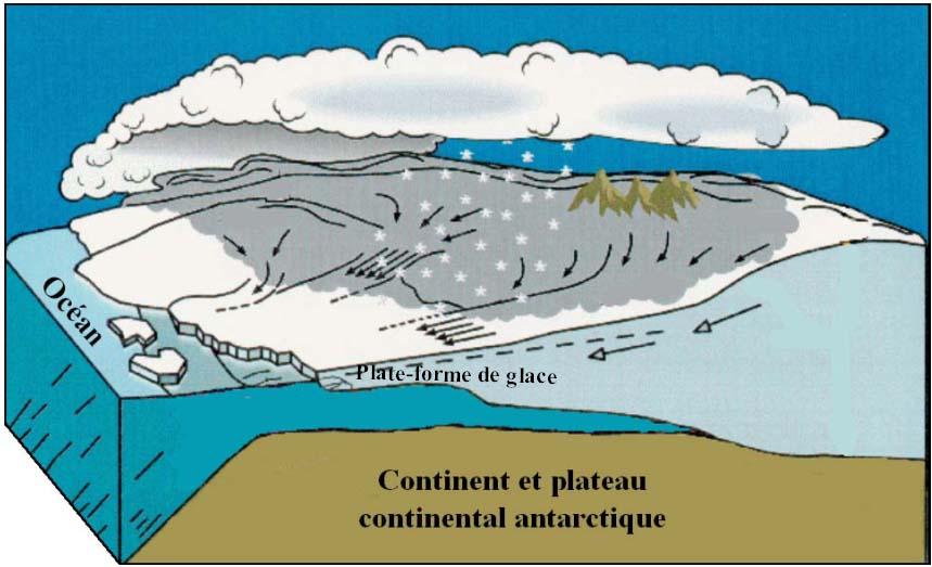 Bloc diagramme illustrant ce qu'est une plate-forme de glace
