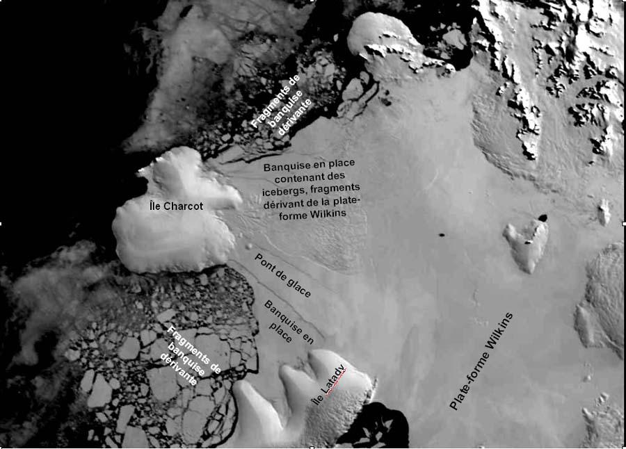 Plate-forme Wilkins (Antarctique): état du pont de glace en février 2003