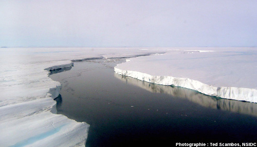 La plate-forme de glace Larsen, péninsule antarctique