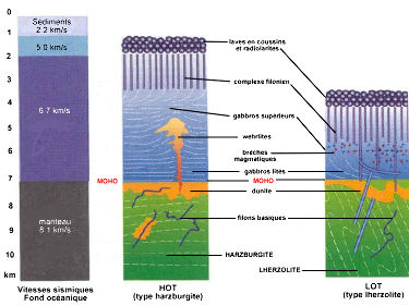 Profils lithosphériques comparés HOT et LOT