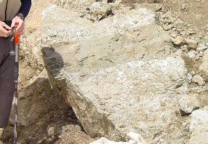 Filon de dolérite recoupant des gabbros, dans le massif ophiolitique du Chenaillet