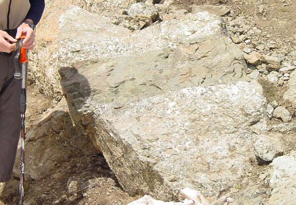 Filon de dolérite recoupant des gabbros, massif ophiolitique du Chenaillet