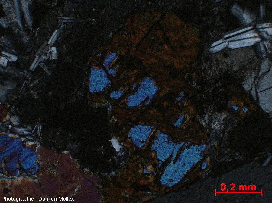 Détail de l'iddingsite dans la lame mince du filon de Brenterc'h, LPA