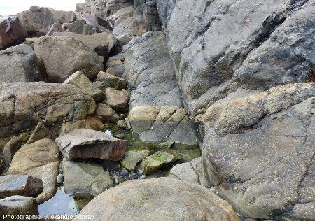 Filon de granodiorite injecté dans le gneiss