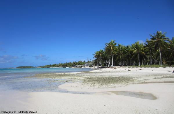 """Un îlot (""""motu"""") habité de l'atoll de Tikehau, dans l'archipel des Tuamotu (Polynésie Française)"""