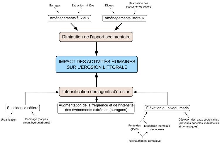 Schéma-bilan: impact des activités humaines sur l'érosion littorale
