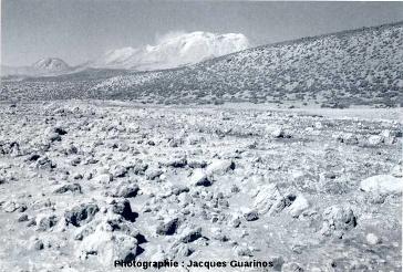 Dépôts pyroclastiques dans une quebrada au NO du Lascar (Chili), mai 1993, un mois après les éruptions
