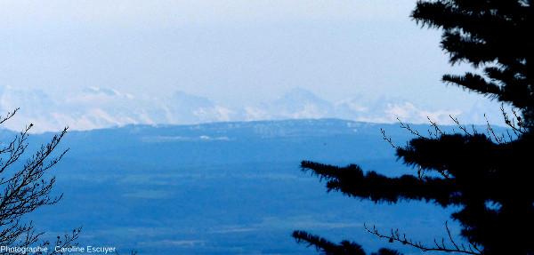 Vue sur le Jura et les Alpes depuis le massif du Rossberg